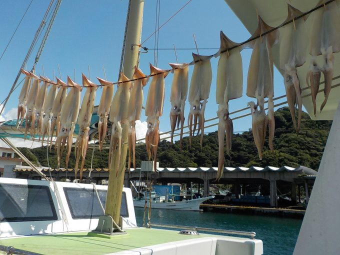 スルメイカ船